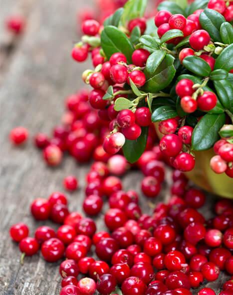 Cellulite Cures - Cranberries