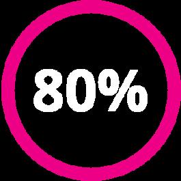 Eighty Percent Icon